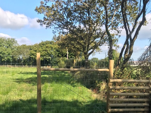 Deer fencing devon